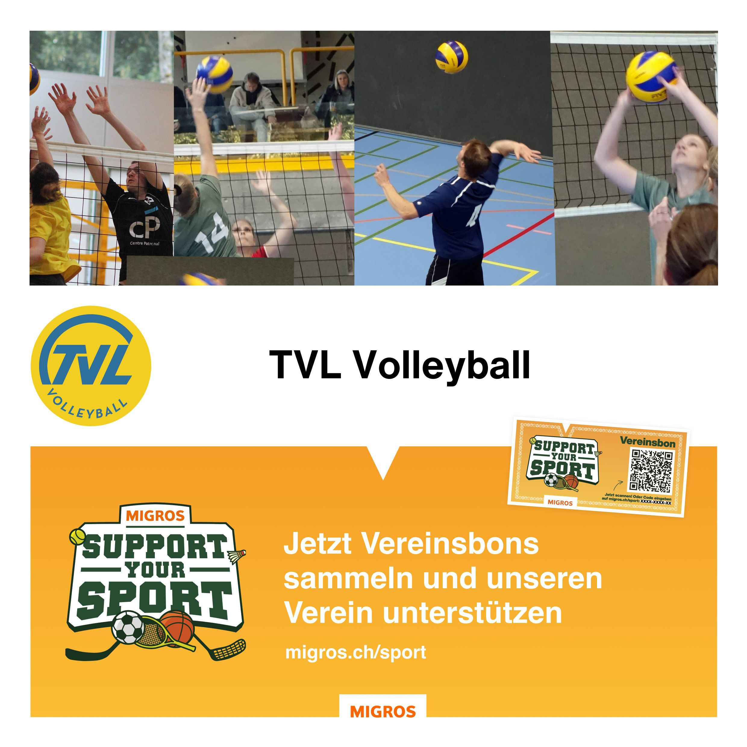 Support your Sport TVL Volley